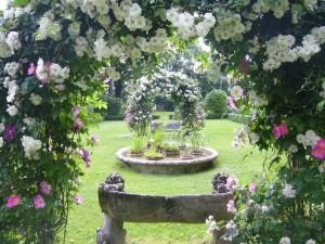 L'amore è un giardino bellissimo da curare ogni giorno